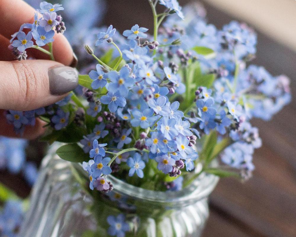 Обработка растений для заливки эпоксидной смолой фото 4