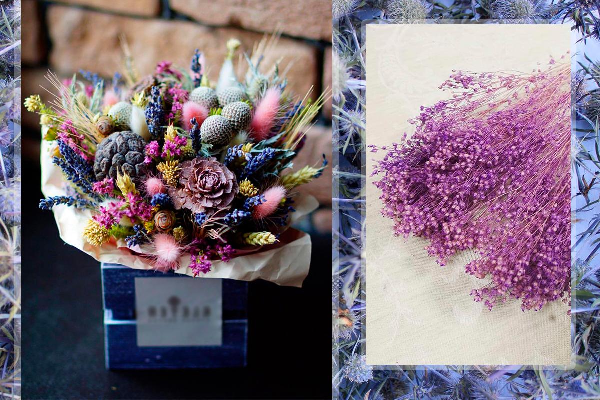 Как покрасить сухоцветы
